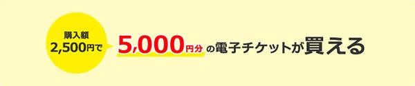 購入額2500円で、5000円分の電子チケットが買える!
