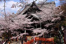 和歌の浦・紀三井寺